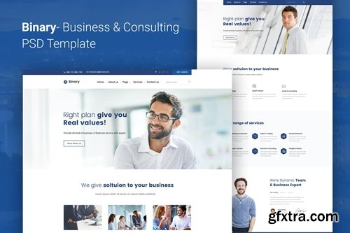 Binary - Business Consulting PSD Template