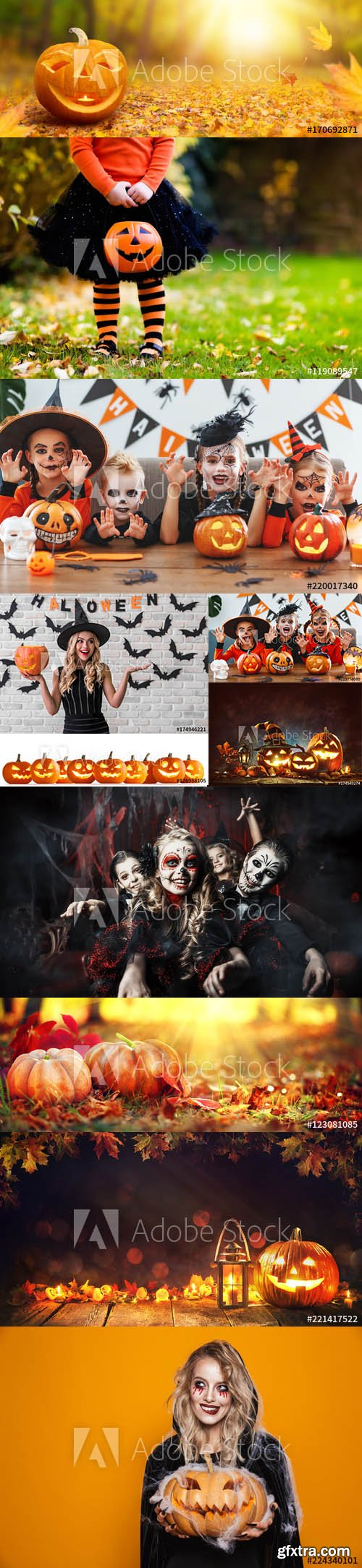 Set of Halloween Background vol1