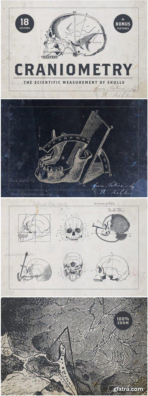 Craniometry 1761160