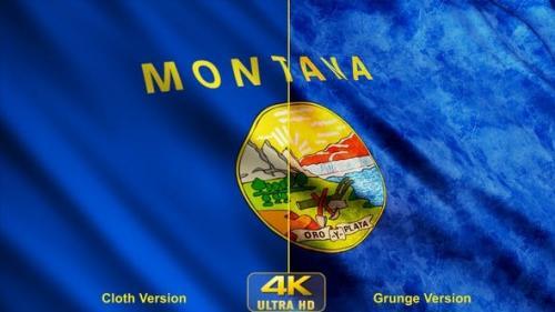 Udemy - Montana State Flags