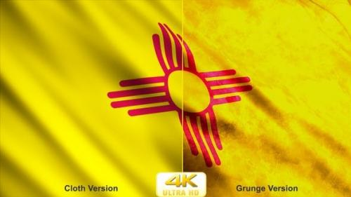 Udemy - New Mexico State Flags