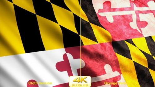Udemy - Maryland State Flags