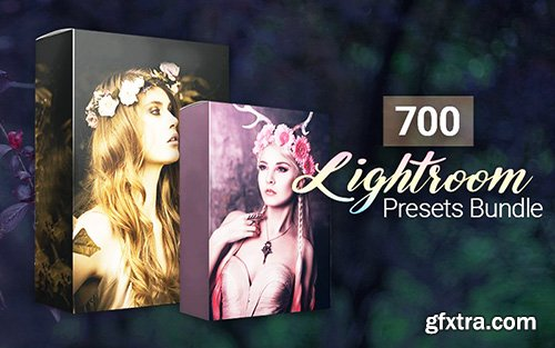 Inkydeals 700 Amazing Lightroom Presets Bundle