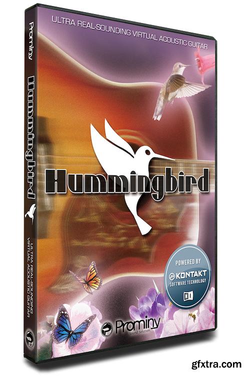Prominy Hummingbird v1.22 KONTAKT-AwZ