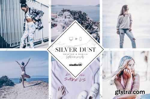 CreativeMarket - 2 Silver lightroom presets 4007319