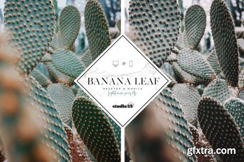 CreativeMarket - 3 Tropical-Botanical Presets 4057352