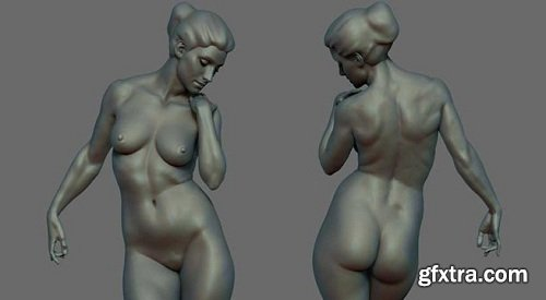 CGMA – Anatomy for Production
