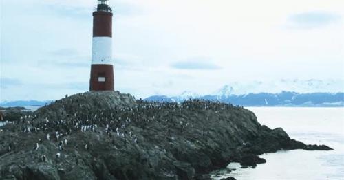 Les Eclaireurs Lighthouse with Birds. - VX9BLJR