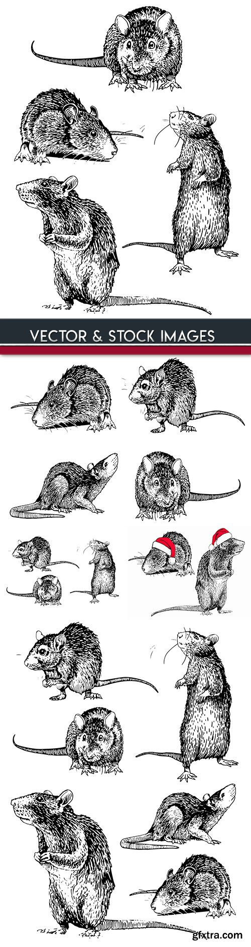 Mouse drawn illustrations symbol new Years