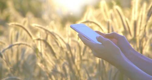 Smartphone Message - LKWSJVR