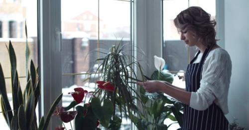 Young Woman Cuts the Leafs of Flowers - PGDWJ3K