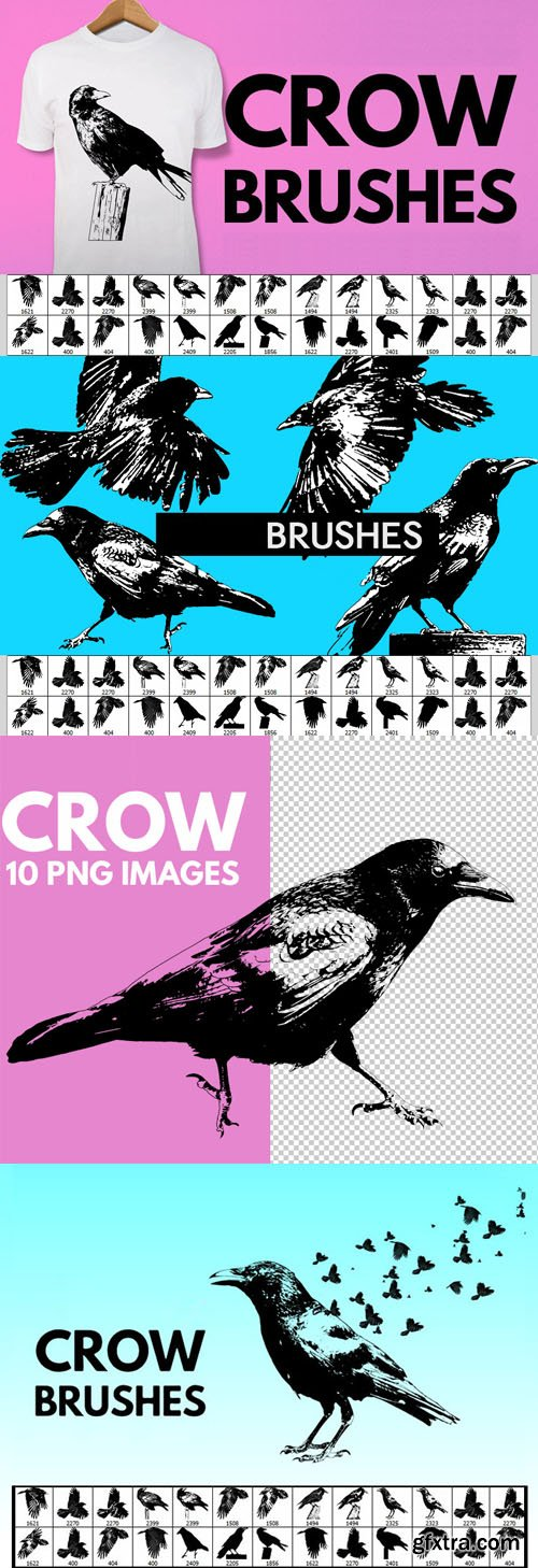 35 Crow Brushes for Photoshop