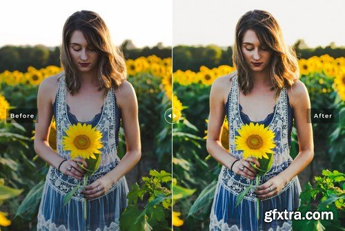 Jonquil Mobile & Desktop Lightroom Presets