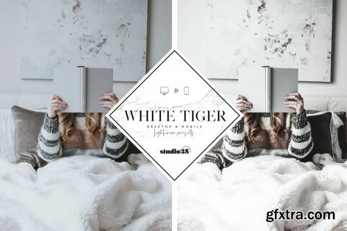 CreativeMarket - 5 Lightroom presets bundle 4169635