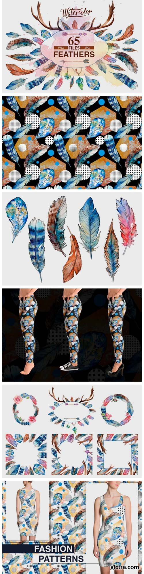Feather PNG Watercolor Bird Set 1980570