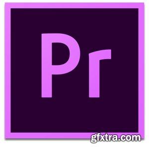 Adobe  Premiere Pro 2020  v14.0.0.572