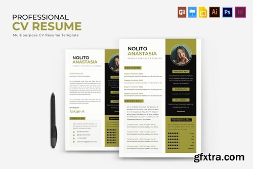 Professional | CV & Resume