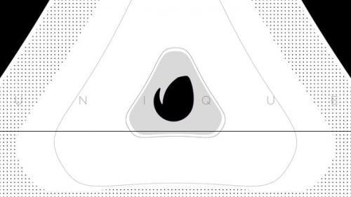 Videohive - Glitch Logo Reveals