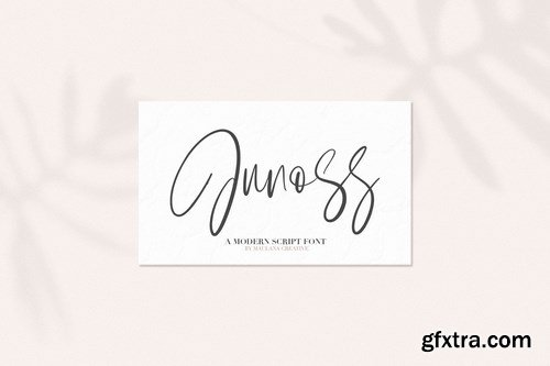 Junos Ridge - Handwritten Brush Font