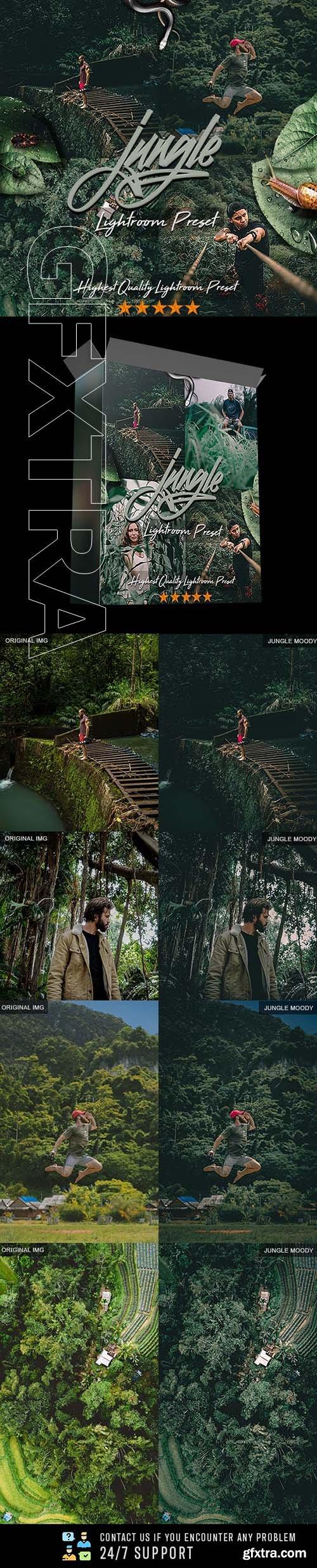 GraphicRiver - Jungle Moody PRO Preset 24885969