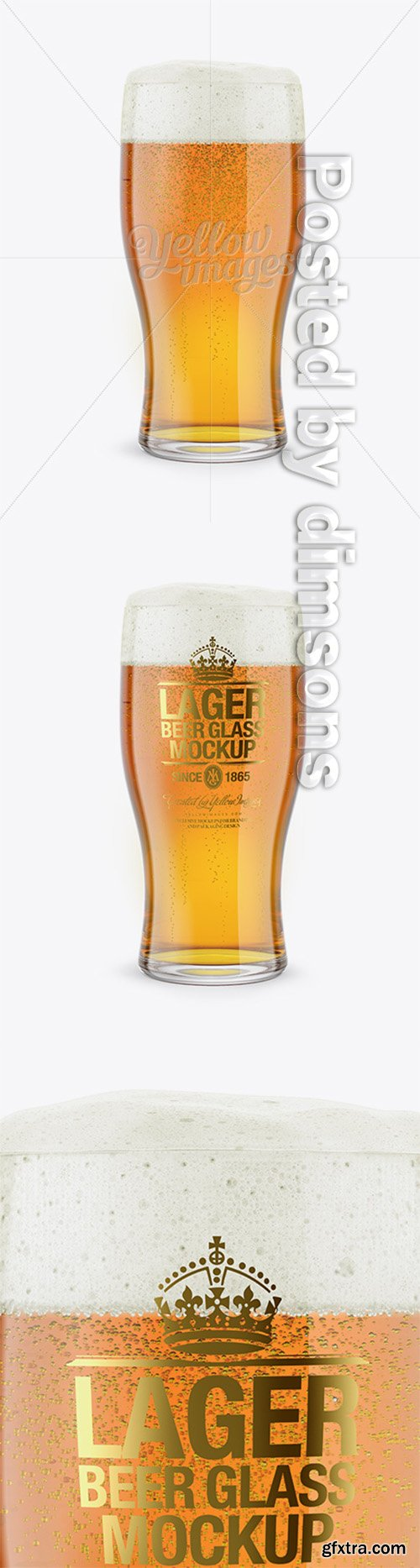 Lager Beer Glass Mockup 15550