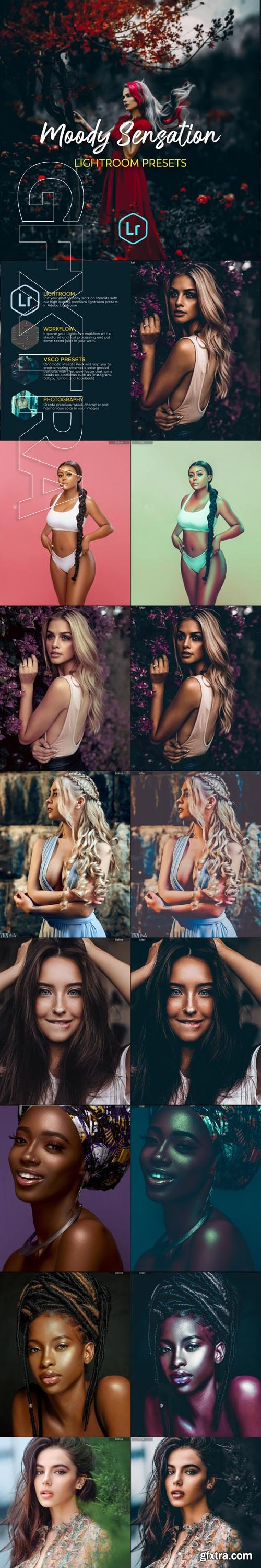 GraphicRiver - Moody Portraits Collection Lightroom Presets 24876957