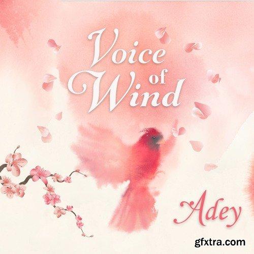 Soundiron Voice Of Wind Adey v1.1 KONTAKT