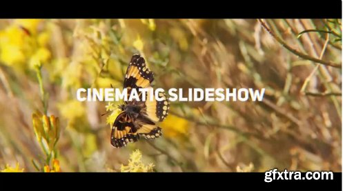 Cinematic Slideshow 310182