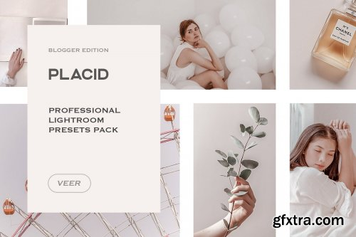 CreativeMarket - Placid Lightroom Presets Mobile 4241896