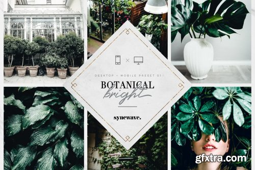 CreativeMarket - 10 Botanical Lightroom Presets 3610687