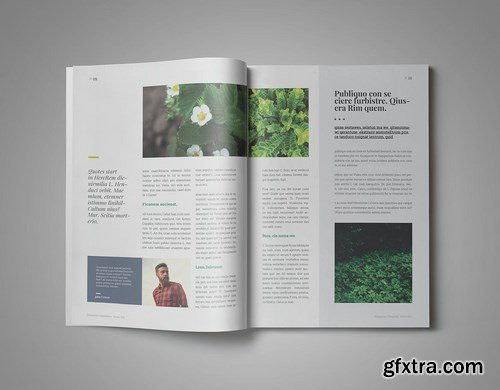 Amelia InDesign Magazine Template