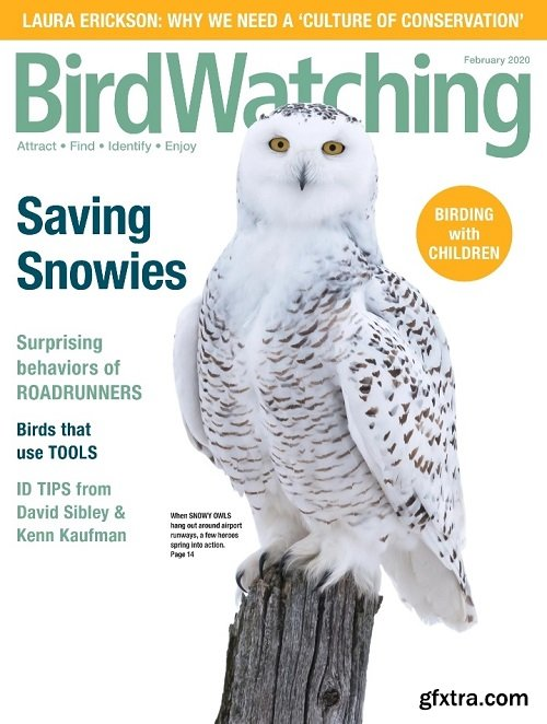 BirdWatching USA - February 2020