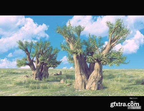 Daz3D - Nature Plants Bundle
