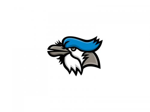 Blue Jay Head Mascot - blue-jay-head-mascot