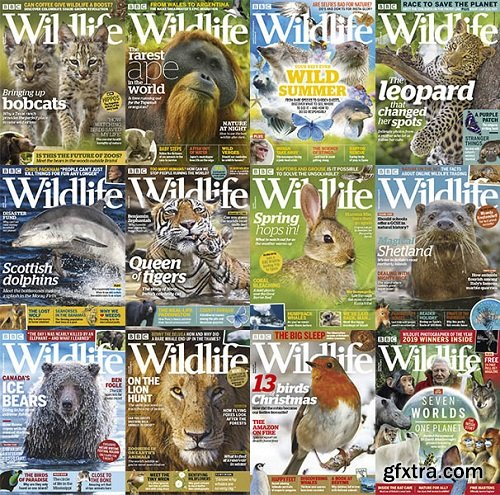 BBC Wildlife - 2019 Full Year Issues Collection