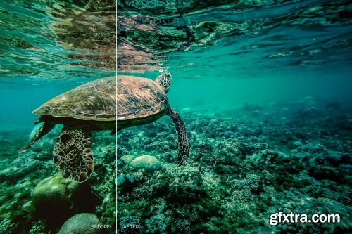 CreativeMarket - Wildlife Mobile LR and ACR Presets 4171696