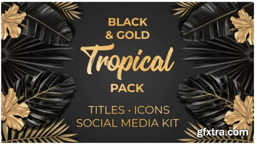 Black And Gold Tropical Pack - After Effects 314429