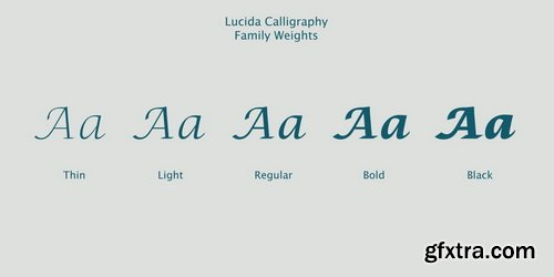 Lucida Calligraphy Font Family