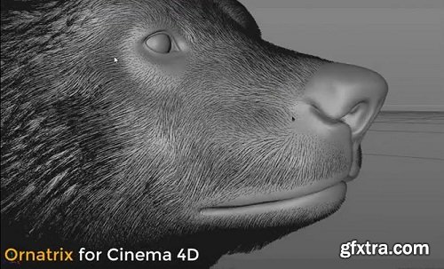 Ornatrix v1.0.0.21988 for Cinema 4D Win