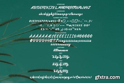 CM - Aimchestar - Script Font 4464407