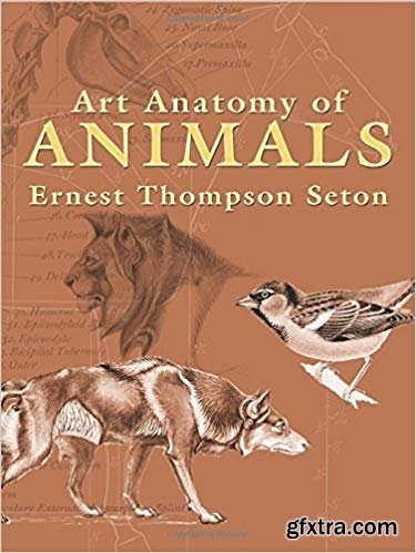 Art Anatomy of Animals (Dover Anatomy for Artists)
