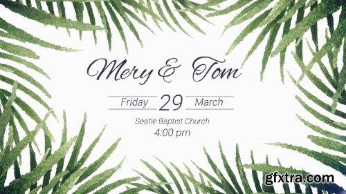 Tropical Wedding 14254747