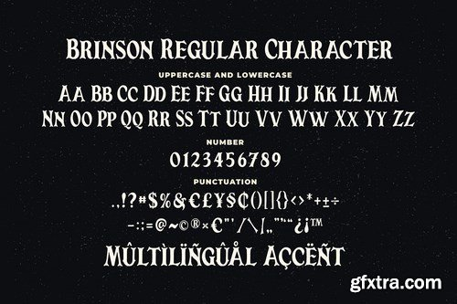 Brinson Regular - Vintage Serif Font
