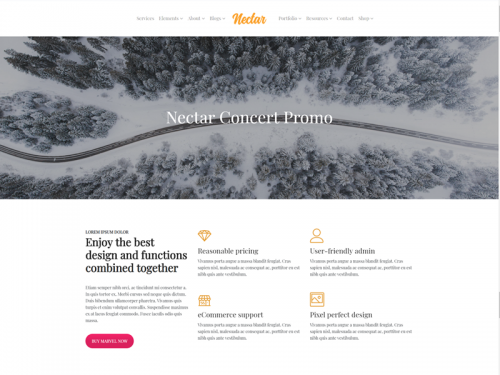 Project Page - Nectar WordPress Theme - project-page-nectar-wordpress-theme