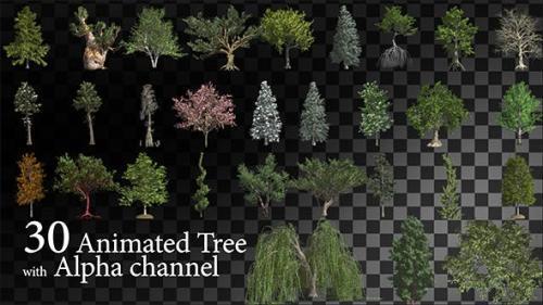 Videohive - 30 HI Poly Animated Tree