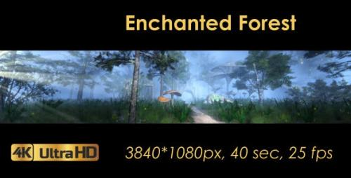 Videohive - The Enchanted Forest Panorama