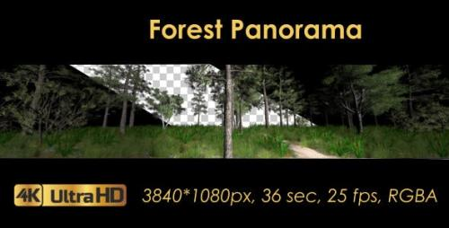 Videohive - Forest 3D Panoramic Animation