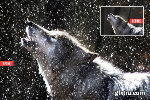 CreativeMarket - Soft Snowfall Photoshop Action 4387353