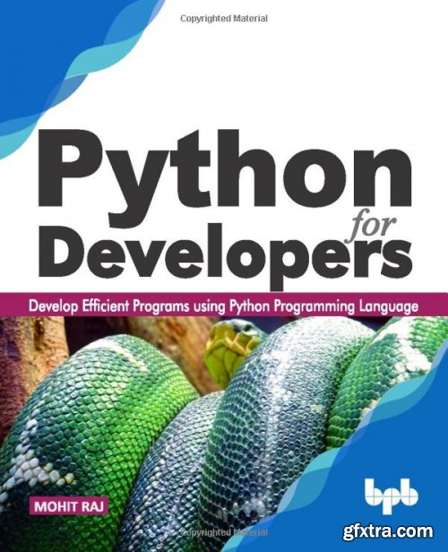Python for Developers: Learn to Develop Efficient Programs using Python
