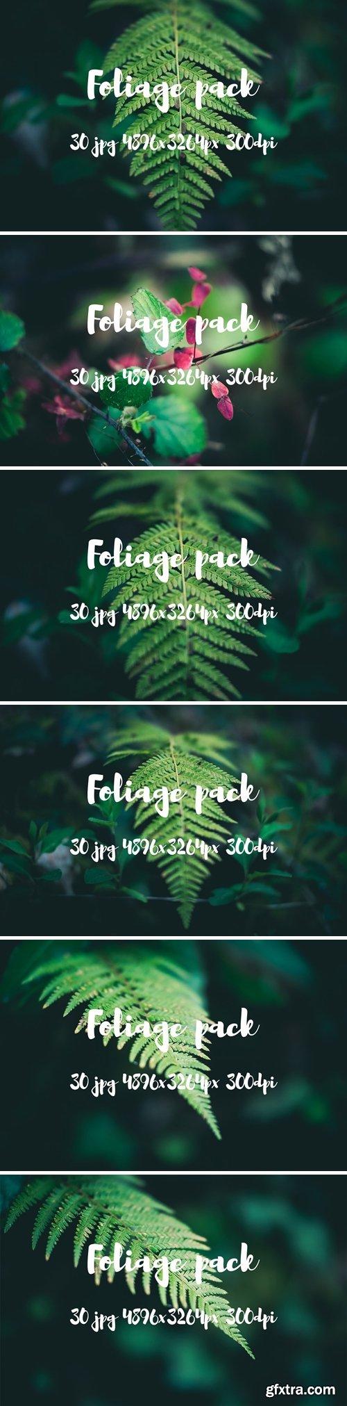 CM - Foliage pack 2477731